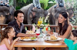 The Elephnat View Restaurant_1