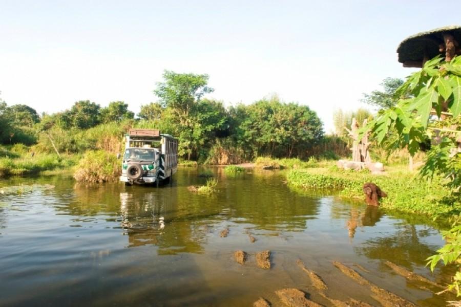 1456375174-7684a0ee07-safari-journey