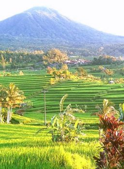Bali Best Sightseeing