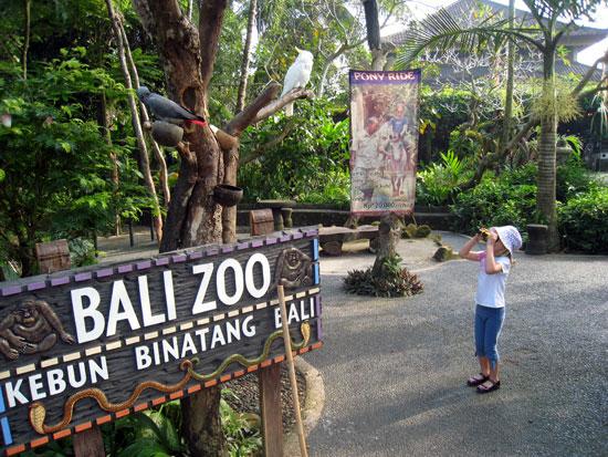bali_zoo_sign