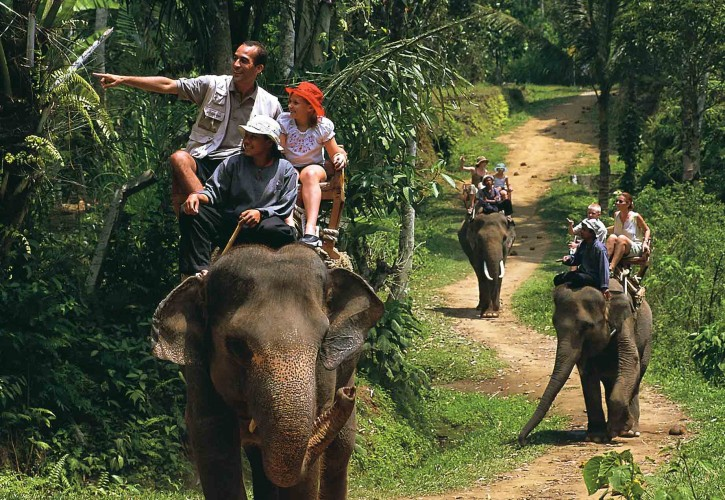1460694475-73db93bcb8-true-balinese-experience-gogonesia-elephant-trekking – Copy