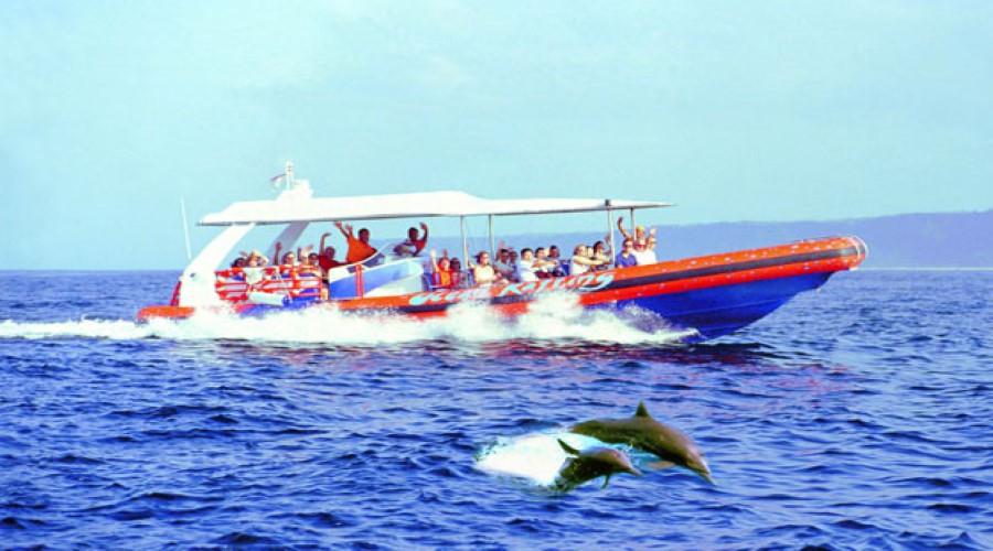 Bali-Hai-Cruises-4_900x500
