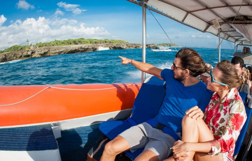 Dolphin-Cruise-Bali-Dolphin-Watching-Cruise-Bali-Ideas-3-870×555